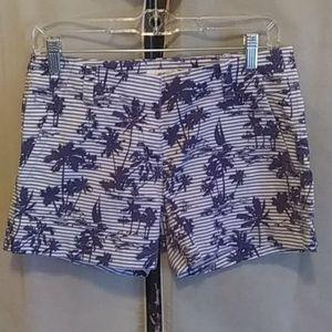 Vineyard Vines striped palm tree shorts